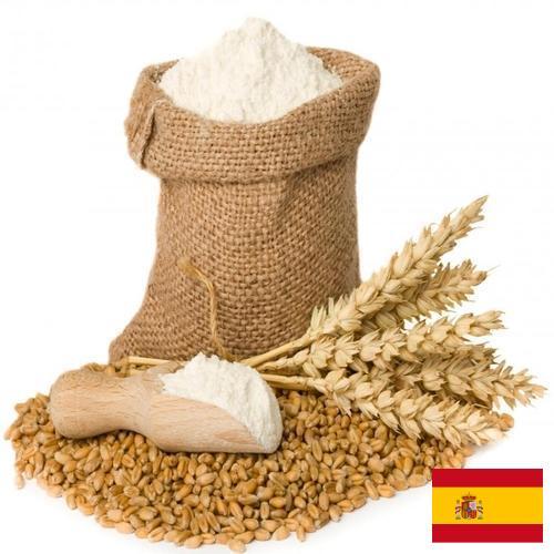 мука пшеничная первый сорт из Испании